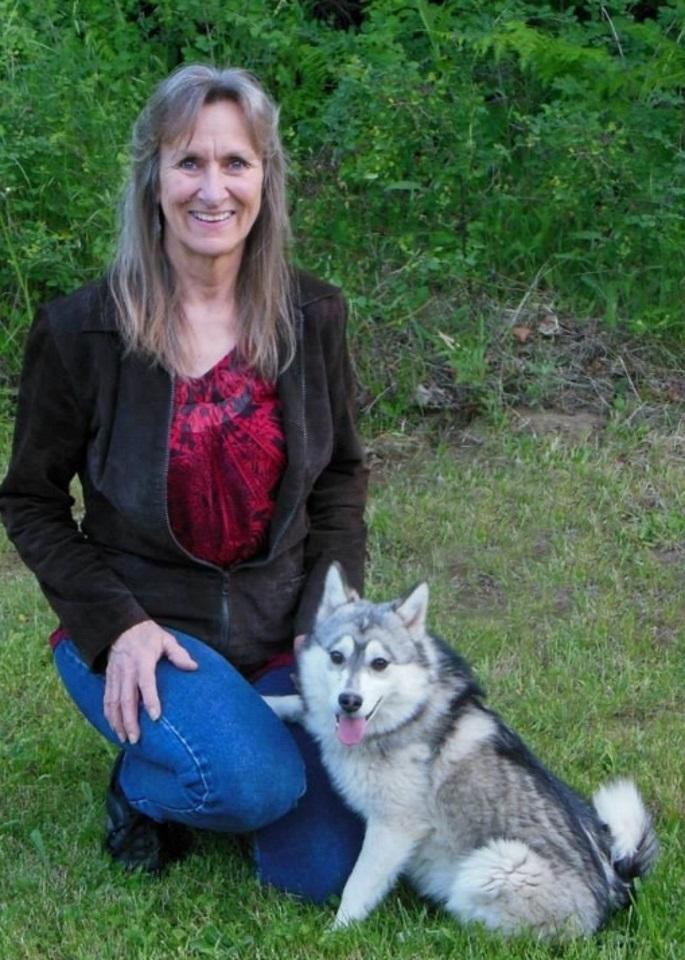 Breeder And Provider Of Mini Husky Puppies Miniature American